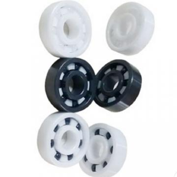 Toyo Passive Magnetic 3211 6316 6007 6305 Lu Bones Bearing