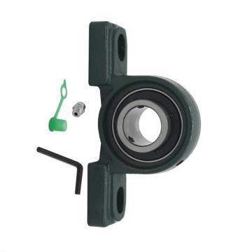 SKF Original Chrome Steel Motor Bearing Pump Station Bearing 6300 6302 6304 6306 6308 6310 Deep Groove Ball Bearing /Wheel Bearing
