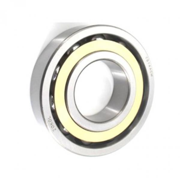 Best selling deep groove ball bearing 6202DDU high quality nsk brand from Japan famous brand cheap #1 image
