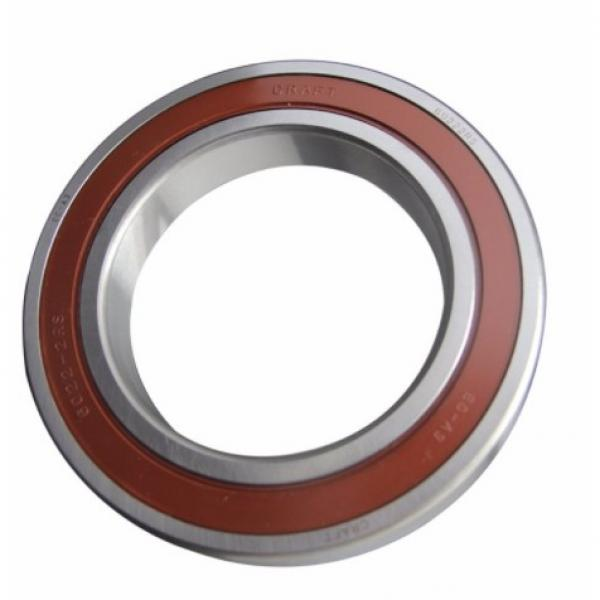 NJ2004EV/C3 Single Row Full Complement Cylindrical Roller Bearing #1 image