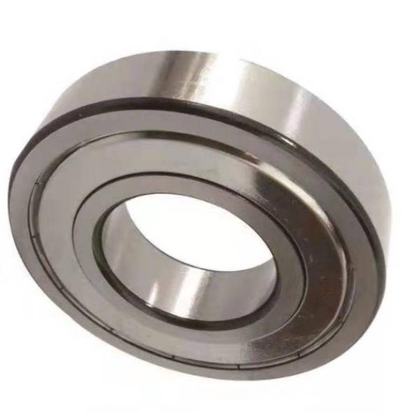 S6003-2rsr-F. L. G. Gt-2 FAG Type Deep Groove Ball Bearing in Food Grade Machines (17mmx35mmx10mm) #1 image